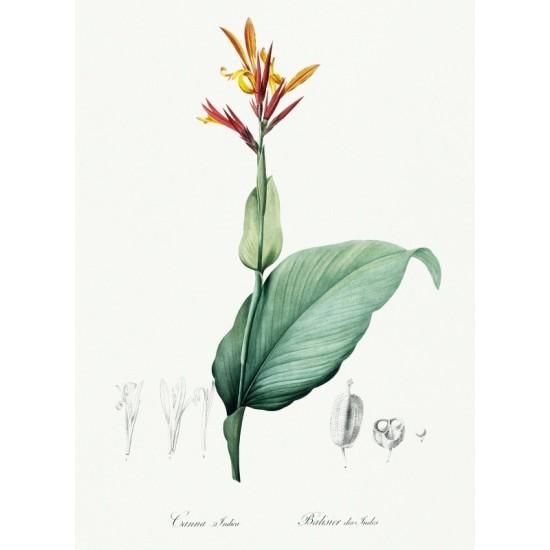 Island of Stromboli...