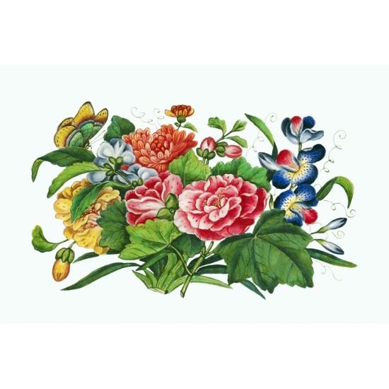 Arachnida–Spinnentiere by Ernst Haeckel