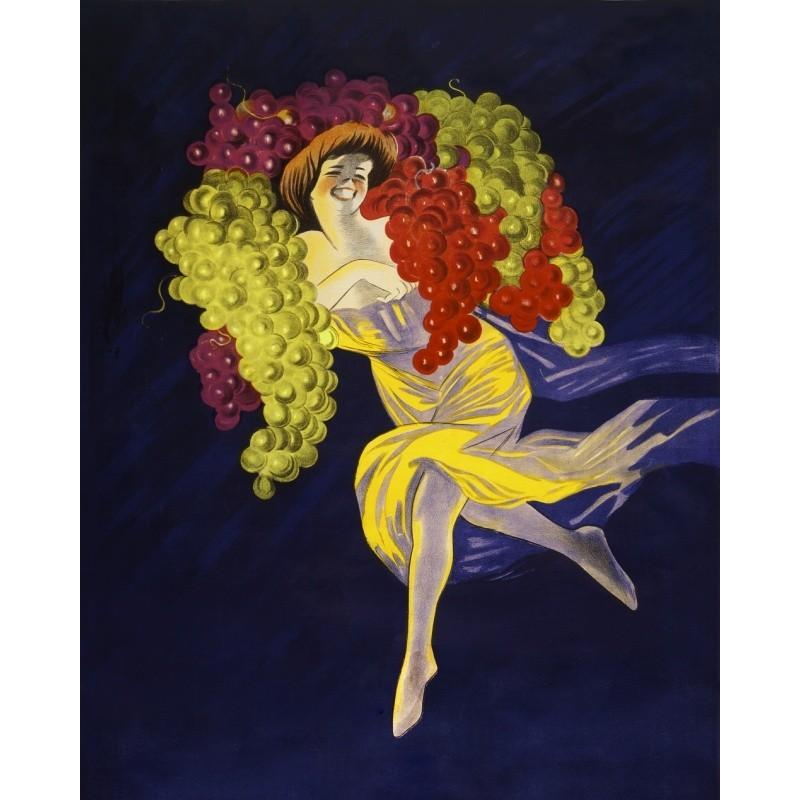 Amaryllis Belladonna illustration by Pierre-Joseph Redouté